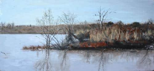 Le lac de Villeneuve en hiver
